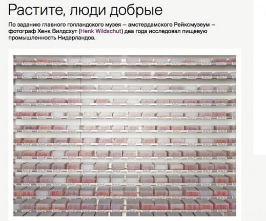 site sqr om 20.48.21 kopie