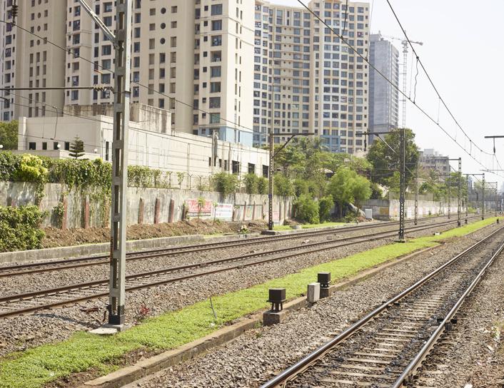 Curry Road, Mumbai